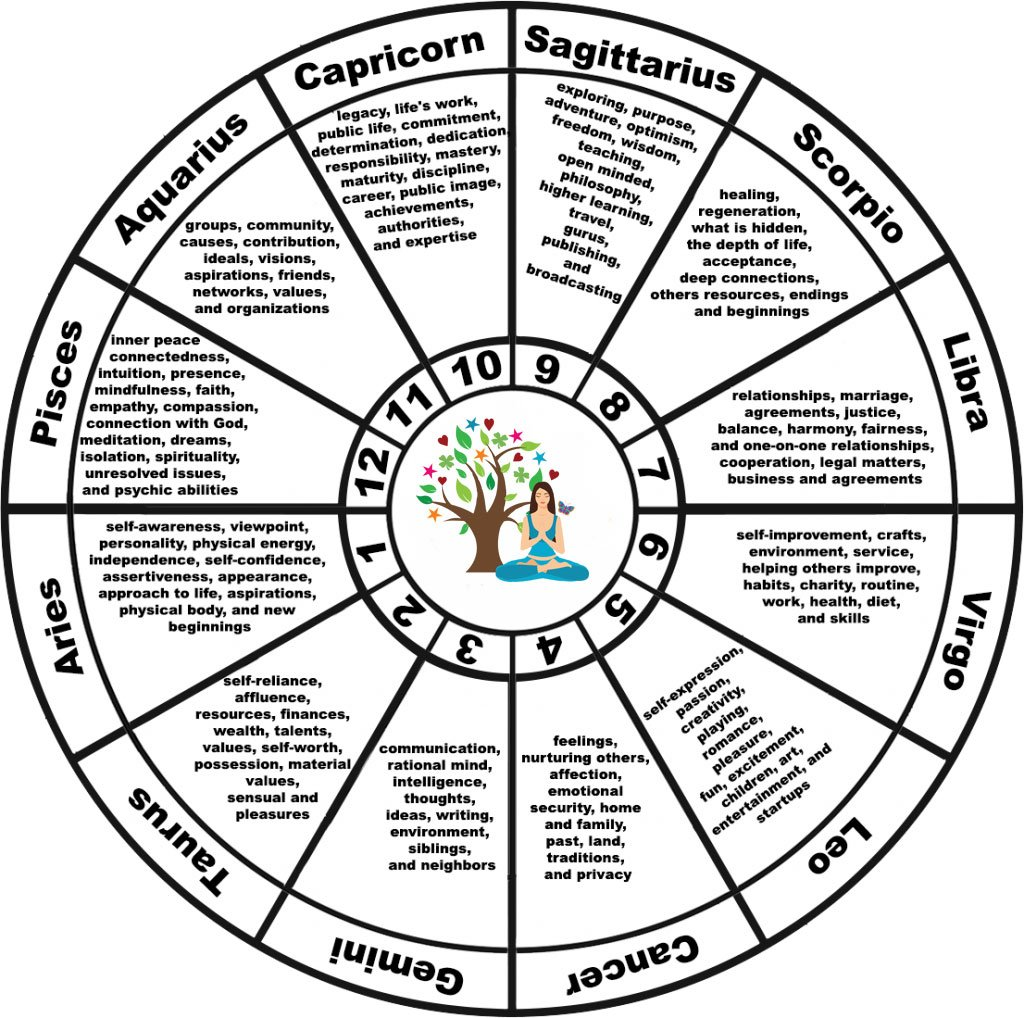 Which astrology house system is most accurate